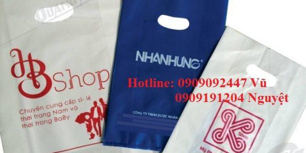 In túi ni lông giá rẻ số lượng ít tại Sài Gòn